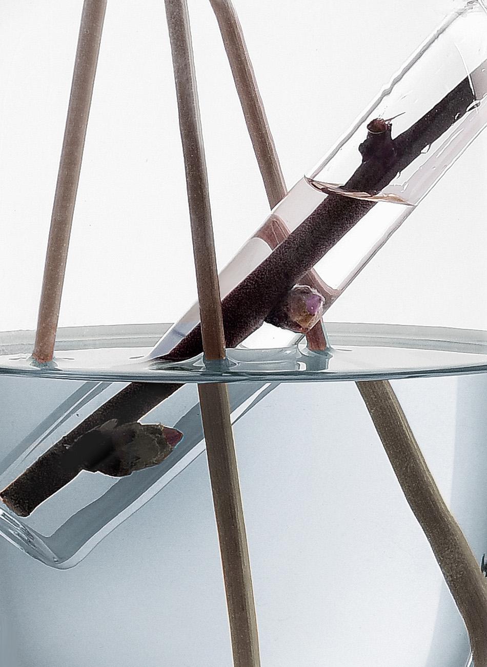 vase perfume diffuser - Denis Guidone ichendorf design - 02