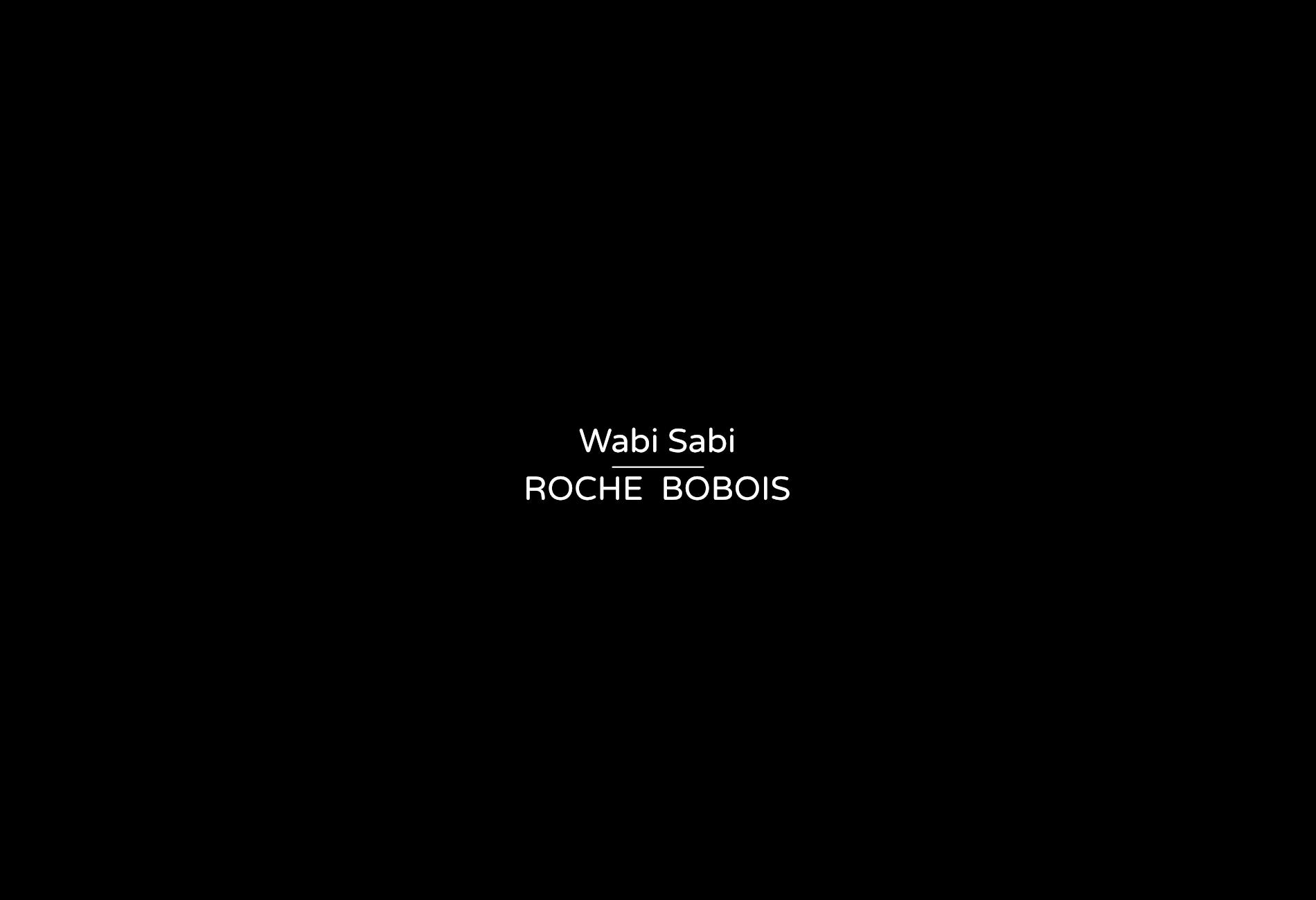 mirror - Denis Guidone Wabi Sabi design Roche Bobois - 00